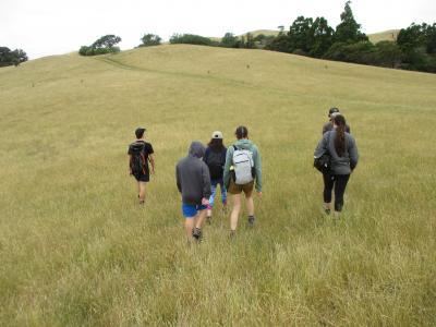 Group hiking through the feilds